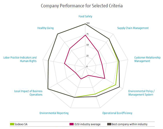 DJSI - Sodexo Performance for Selected Criteria (525x415)